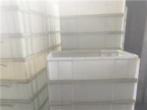 �理白色塑料盒