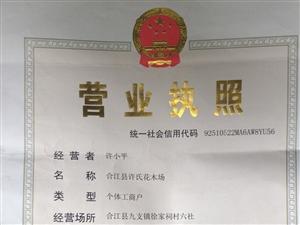 权科视力合江服务中心