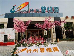 忻州碧桂园
