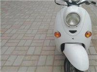 小龜王款式踏板電瓶車出售