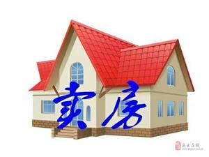 云�����H(�_元大街)2室2�d1�l88.5�f元