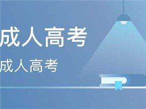 山东省成人高考招生报名正在火热进行中!