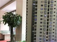 来凤•金盆山公寓二期学区房全城火爆热销中