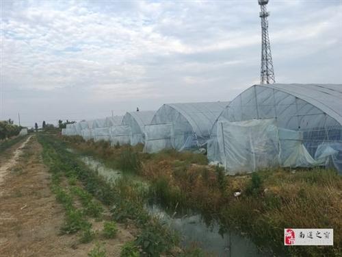 水产养殖大棚基地整体出售,价格便宜,先到先得