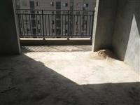 火车站附近,新楼盘毛坯景观小高层,黄金楼层单价5千