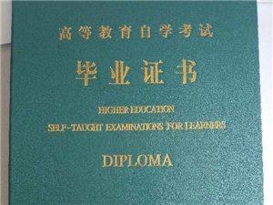 成人高考,自考,远程网络教育专科本科,学历提升
