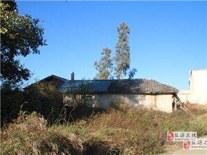 盐源县九洞桥房屋和土地出售