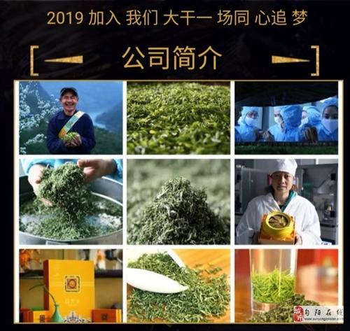 陕西省紫阳县焕古庄园富硒茶业科技有限公司