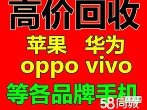 上虞市回收�O果手�C�A��vivo小米OPPO手�C