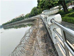 全國定制不銹鋼橋梁護欄不銹鋼公園防護欄不銹鋼河道護