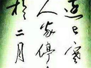 """易学钢笔字−−−−-寒假""""练字集中营""""开班喜讯"""