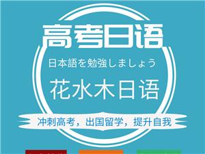 高考日语冲刺/考级日语