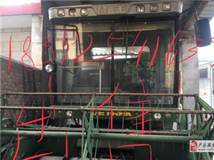 铁价谷王tb60