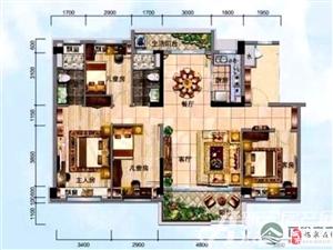 急售!临泉碧桂园9楼+急用钱低于市场价格+4室2厅2卫95万元急售