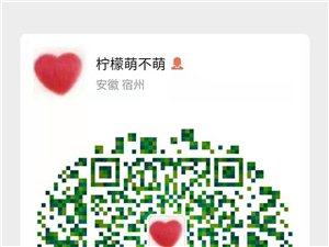 宿州尚文电脑课程培训