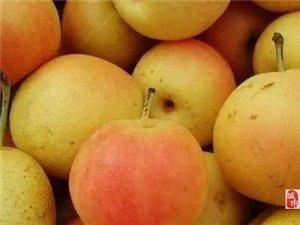 批发 零售安果梨