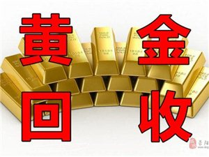 荥阳回收黄金价格是多少?荥阳回收黄金哪家靠谱?