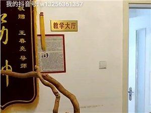 王春亮推拿踩蹺技術2020到2025年培養計劃