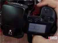闲置佳能40D单反相机+腾龙18-300镜头