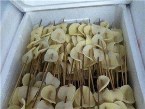 郑州烧烤食材半成品烧烤工具出租卡式炉炉出租全城配送