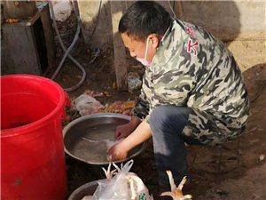 三官庙办事处高庄陈村,出售自家散养的麻鸡