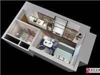 溧水地铁口公寓出售面积30-40平,总价23万,首付11.5万就可安家