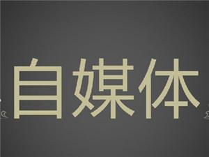 郑州自媒体项目招商