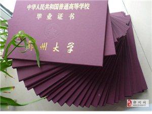 郑州大学远程教育报名入口,郑大本科学历怎么报名?