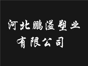 河北省鹏溢聚四氟有限公司