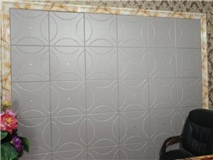 亮晶晶实木生态背景墙