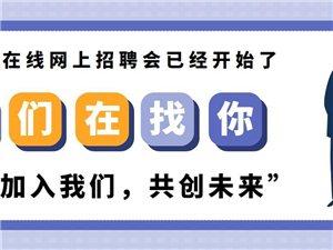 辛集在线网人才频道12月7日信息汇总(辛集在线网)
