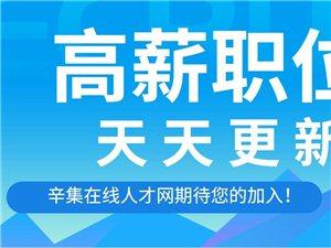 辛集在线人才网12月4日更新招聘信息