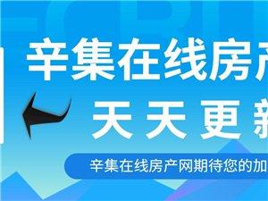 辛集在线房产网12月5日房屋出租信息汇总