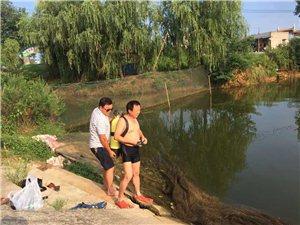 """市冬协救援队员水下""""托起""""稻农丰收的希望"""