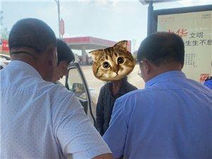 白塔畈民警及时救助1名流浪老人