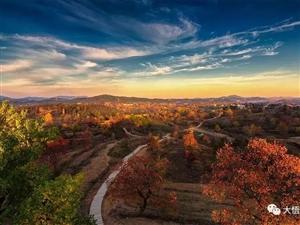 一树红叶一树缘,大悟这里的秋色最动人,你去过吗?
