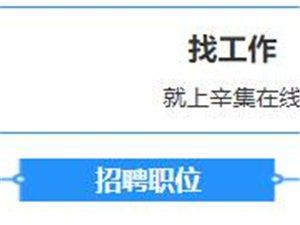 辛集在线人才网招聘职位12月5日汇总,