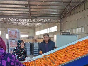 助力高峰桥村产业发展,扶贫攻坚的天津人聂洪水