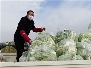 金�P山蔬果送新�r蔬菜支持董市�抗�粜滦头窝滓咔�