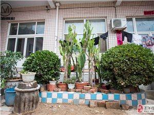 5003柳林村-李清代