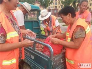 新区一果园联合爱心协会免费为新区环卫工提供新鲜桃子,爱心活动
