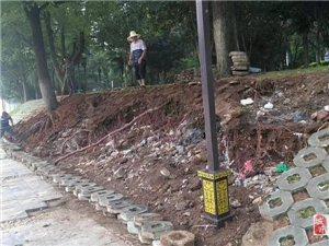 【�W友爆料】洪水�^后的�钤�洲
