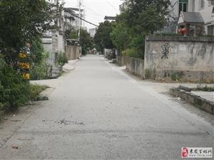 县翔凤镇白羊坡村进村主干道存在违法违规行为的请示