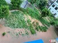 富顺突降暴雨,石夹口居民点被淹