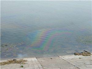 彩虹桥西面河面有油污。