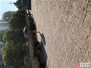 福海苑后�T一�l街成了停���