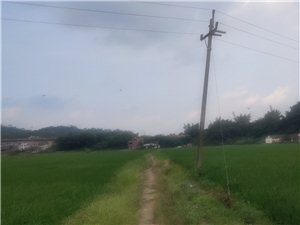 村村通去哪里了