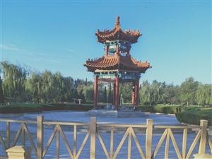 环境优美的西苑植物园