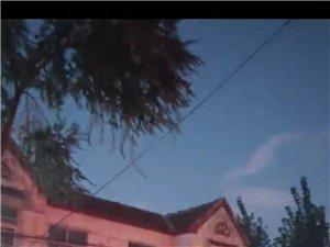 康乐小区南门东西路电缆线严重下垂