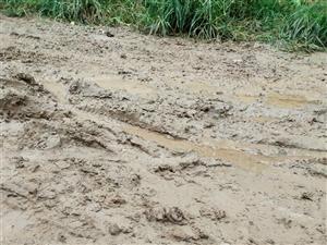 水泥路有水有泥。